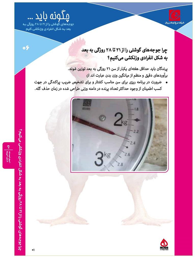 ۰۶- وزنکشی انفرادی جوجه های گوشتی_Page_1