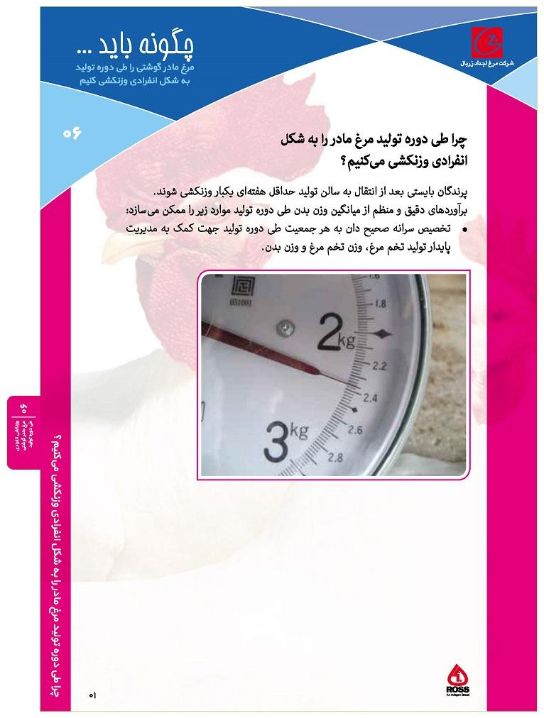 ۰۶- وزنکشی انفرادی مرغ مادر گوشتی طی دوره تولید_Page_1