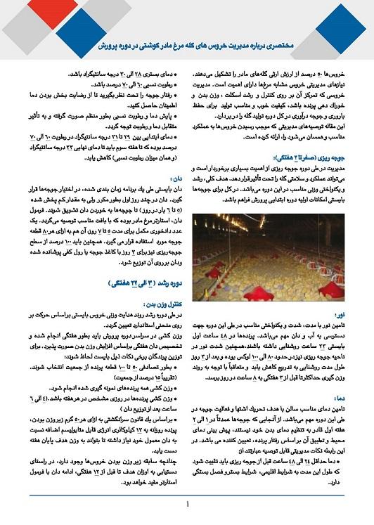 shamaz tech 4_Page_01