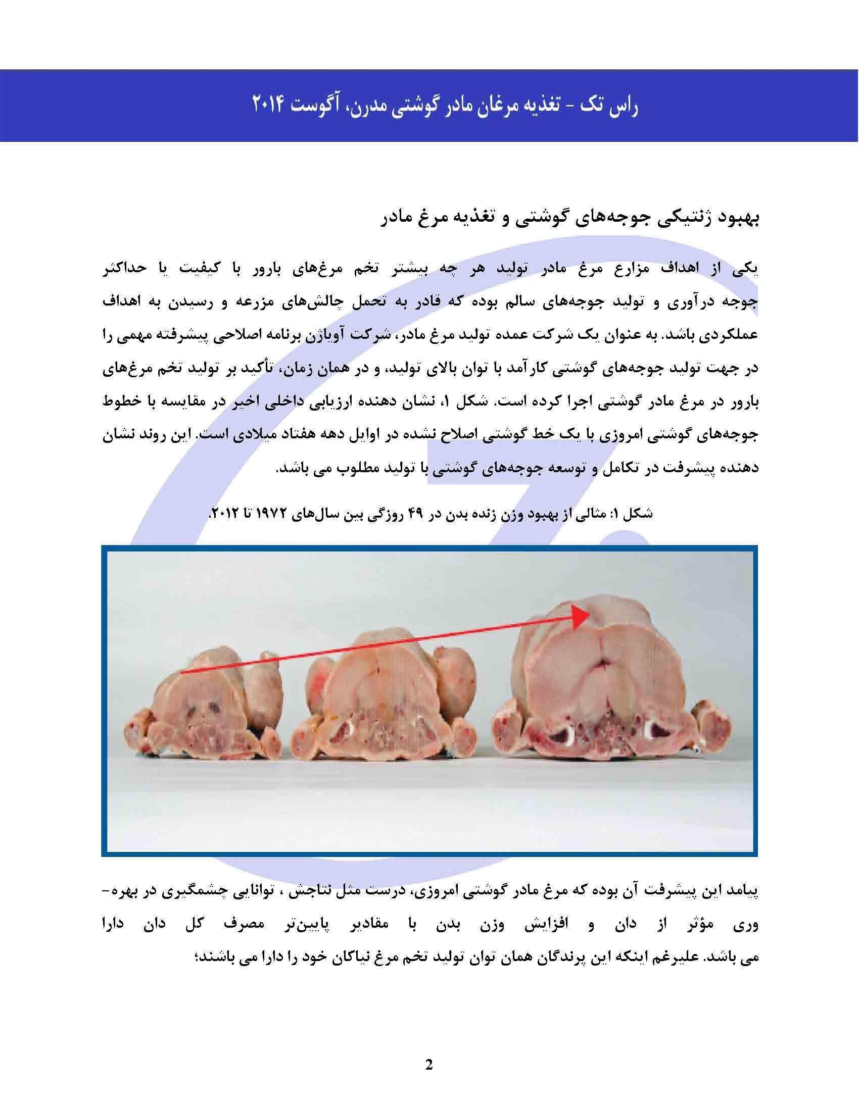 تغذیه مرغان مادر گوشتی مدرن_Page_02